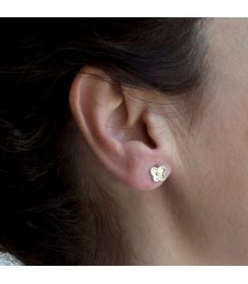 Bicolor Butterfly Earrings