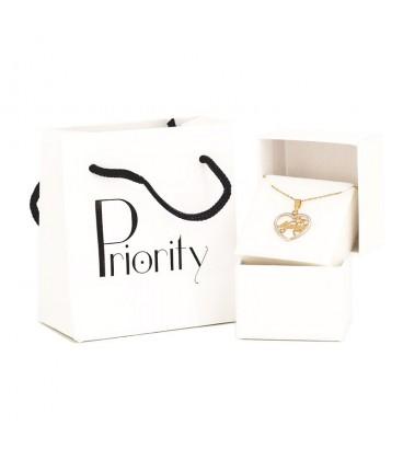 18K Bicolor Gold Frame Earrings with Zirconite